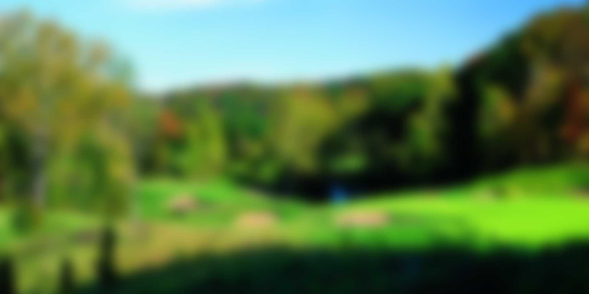 banner-stalbans-blur